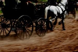 carriagel